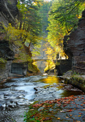 Robert Treman State Park by Dick Welch