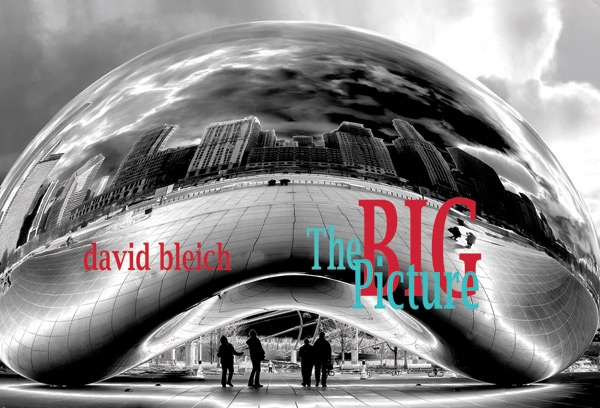 The Big Picture by David Bleich