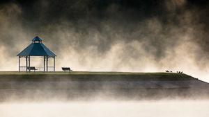 Early Birds, Hemlock Lake by Ron Kenney