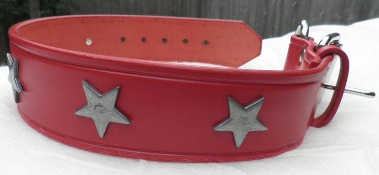 Red star buckle dog collar