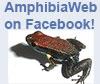 AmphibiaWeb-quickie