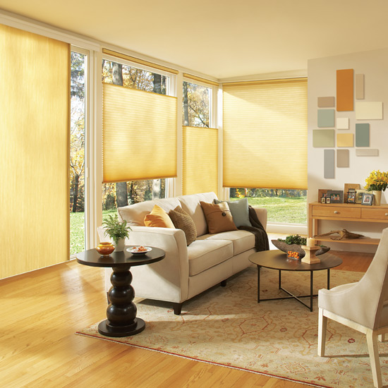 Applause Honeycomb Blinds