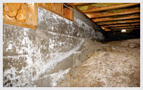 damp, moldy crawlspaces create additional problems iNSIDE your home