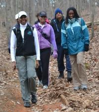 Chicopee Woods Hike