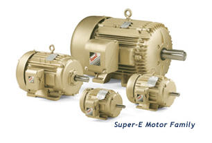 Premium Efficient Motors