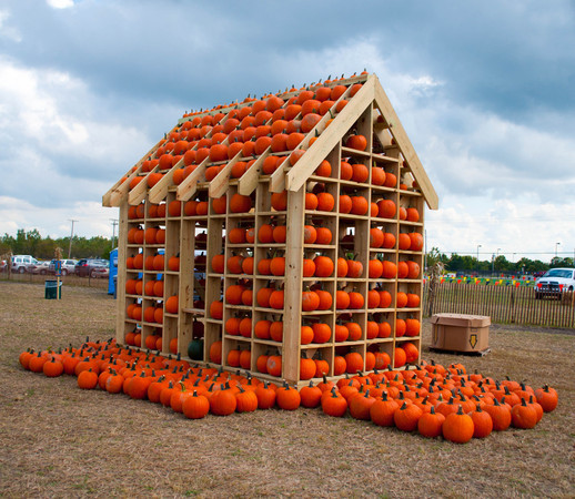 Pumpkin Patch, Corn Maze, Zip-Line and More, Now Open http://conta.cc/1uufY6I
