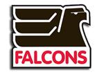 New Falcons Logo