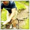 bicycle-man-sm.jpg