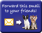 Forward this email to your friends!