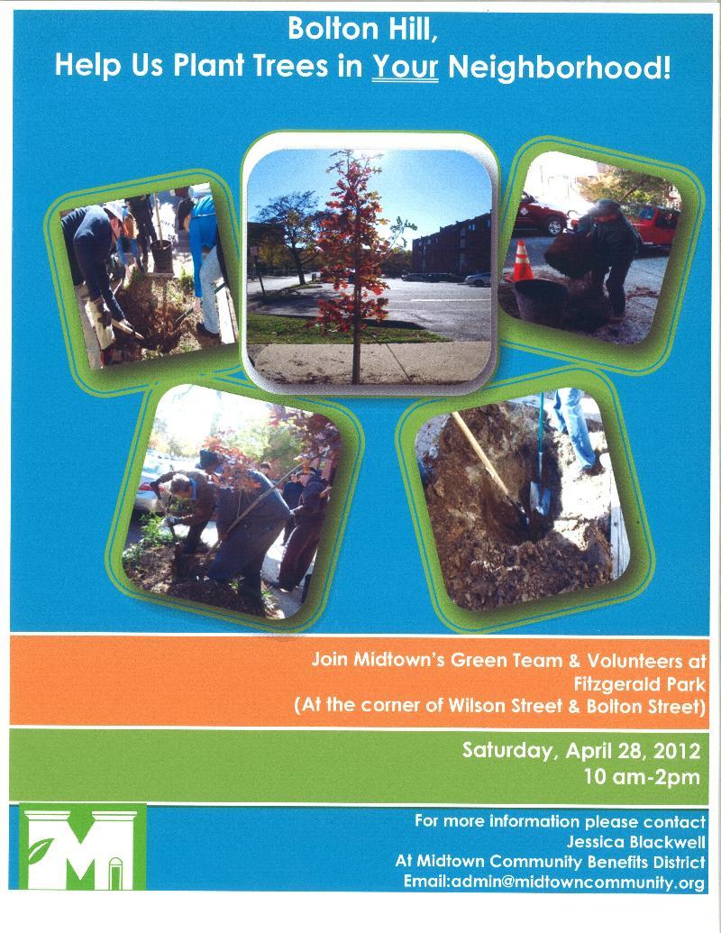 Bolton Hill Tree Planting