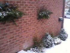 Walkway in Winter
