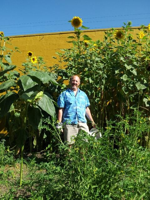 Me and Sunflowers 2013