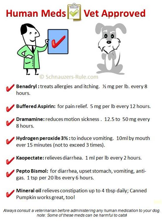 Methocarbamol For Dogs Safe For Humans