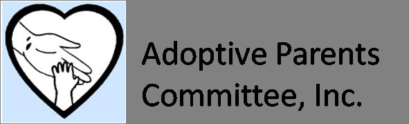 APC Hudson/CT Logo