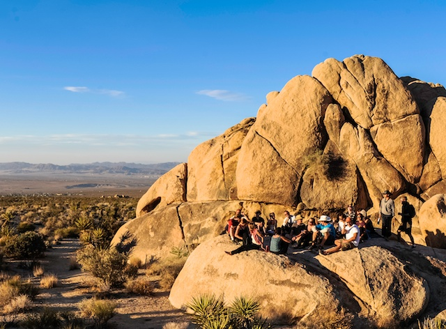 Joshua Tree Happy Hour Rock
