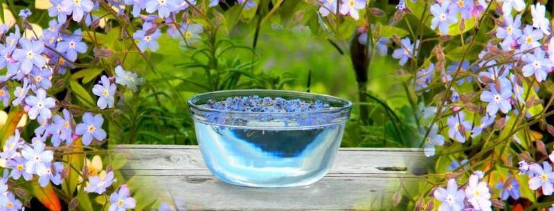 com bowl 1