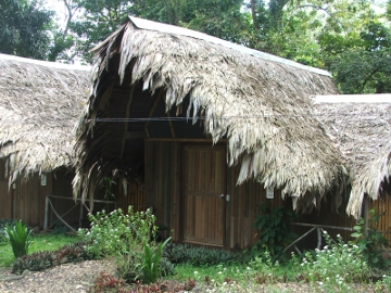 Tropical hut 1