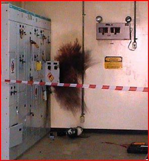 Arc Flash Incident from DOE