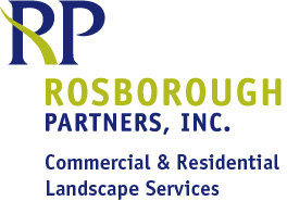 Rosborough Logo