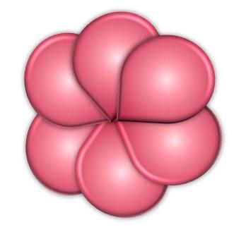 Grouped flower