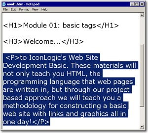 Paragraph tags added to the page