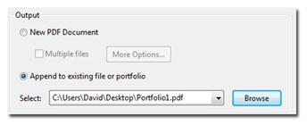 Appending to existing file or portfolio.
