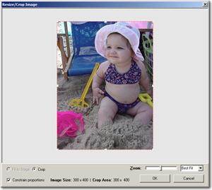 Resize/Crop Image dialog box.