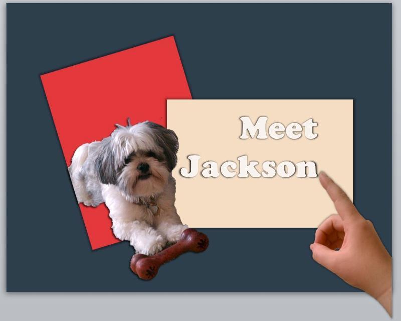 Meet Jackson