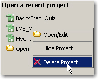 Deleting a project