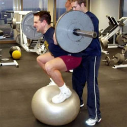 Image result for Squatting on a bosu ball