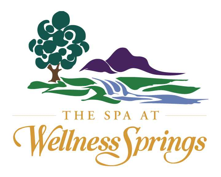 The Spa at Wellness Springs