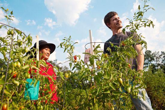 Community Garden 2 people