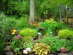 Back garden on Grand Island