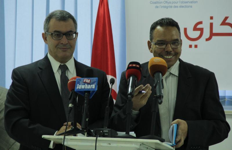 Preliminary Report on the 2014 Legislative Elections