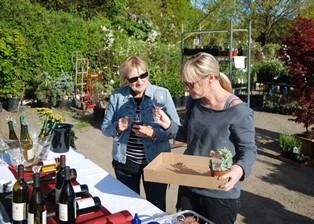 Plant Sale Wine Tasting