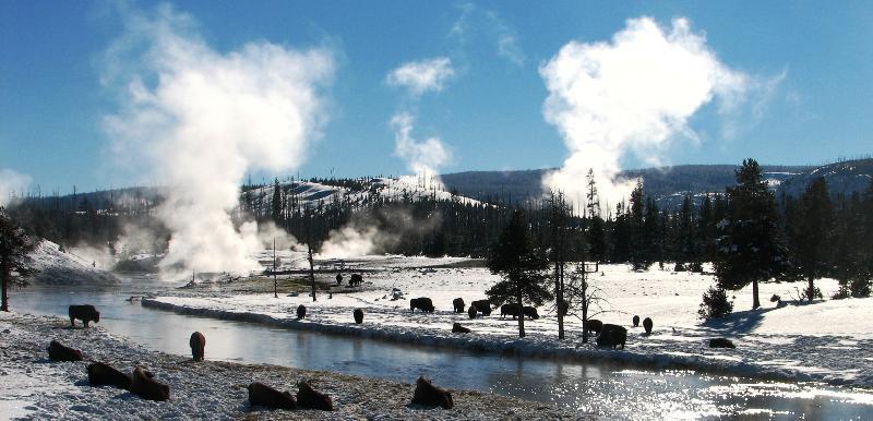 midway_geyser