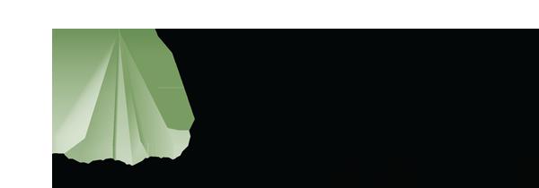 PIM Logo 2013