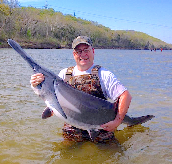 Oklahoma 39 s paddlefish research center to open sunday for Spoonbill fish oklahoma
