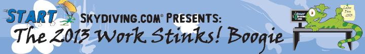 2013workstinks