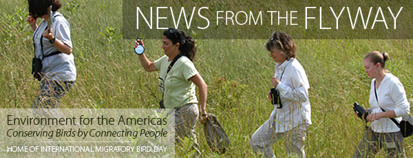 News from the Flyway - Environment for the Americas - Home of IMBD