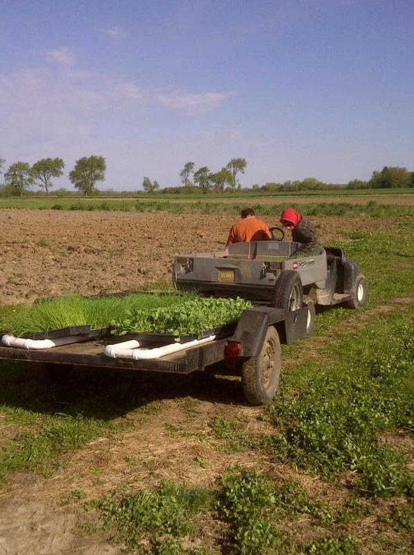 planting crew 4-2012