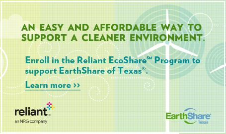 Reliant EarthShare Promotion Flier