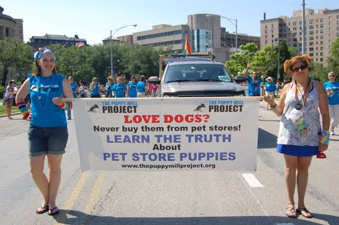 Join us for this year's pride parade!