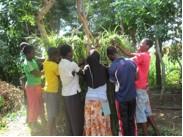 Tinyade Working Group