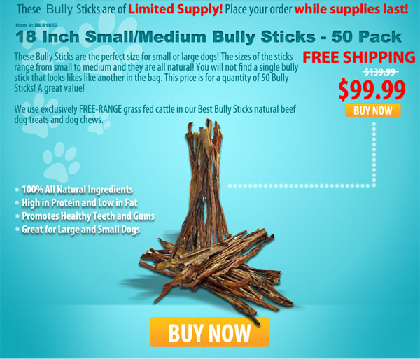 18 Inch Bully Sticks blowout sale today only!