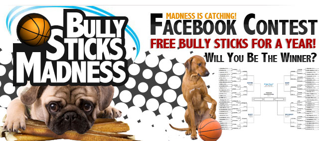 BullySticks Madness Facebook Contest. Free Bully Sticks for a year