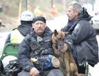Search Rescue canine unit