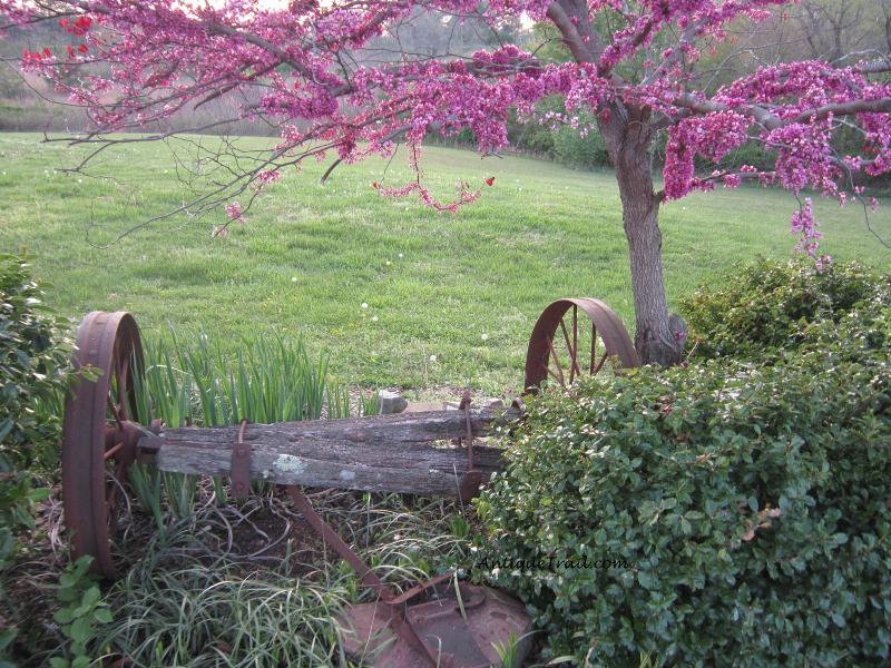 TN Trail - Spring Sale Photo