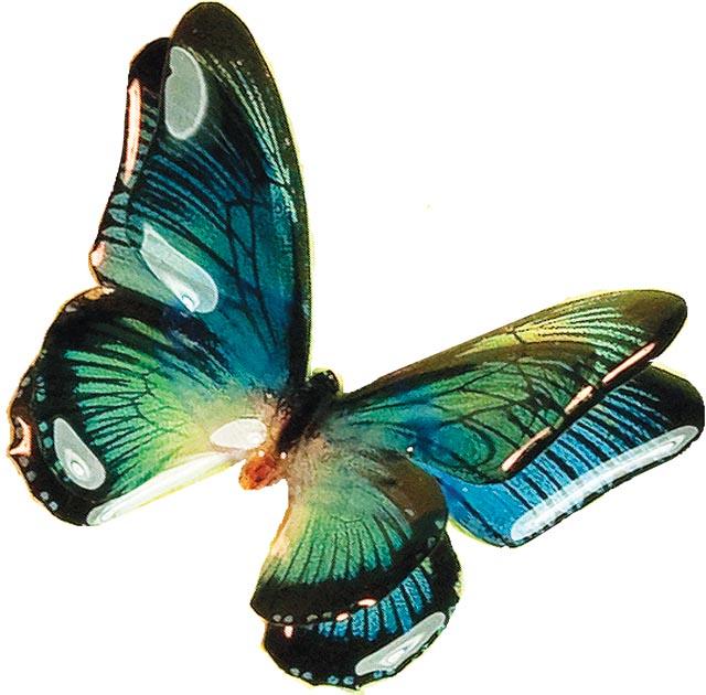 Blue 3-D Butterfly