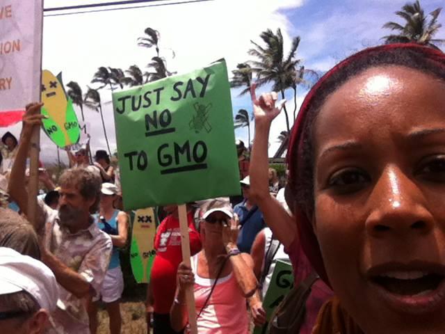GMO no